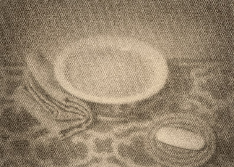 "CRAIG HOOD Soap and Water, 2014 Graphite sur papier / Graphite on paper 33.02 x 45.72 cm | 13"" x 18""  (expo : Encan silencieux Du 23 juin 2016 au 20 août 2016)"