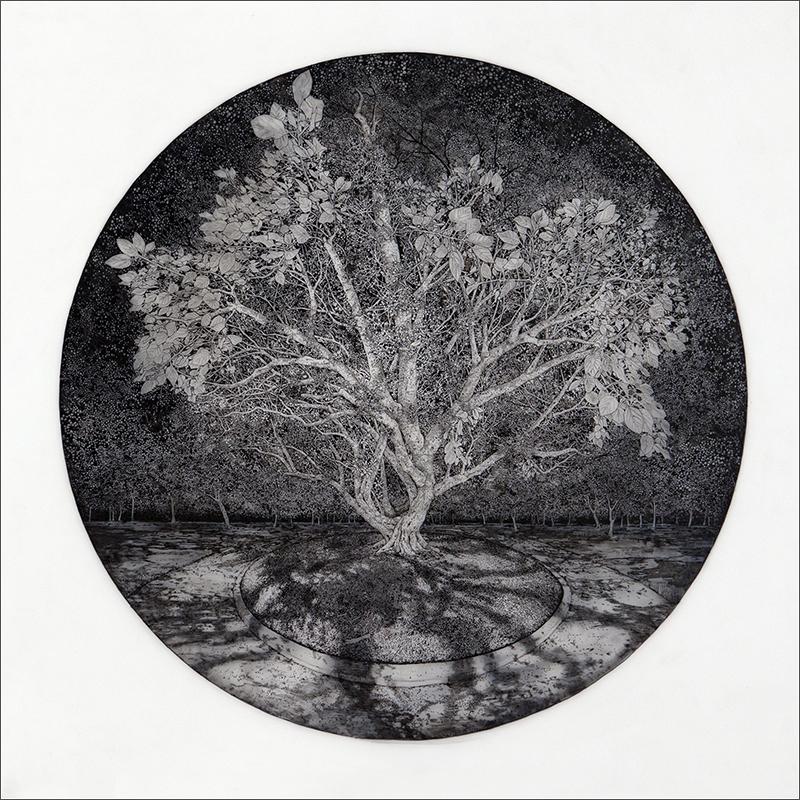 """NOCTURNE, 2015  Encre et graphite sur mylar givré / Ink and graphite on frosted Mylar  67.6 x 67.6 cm / 26 ½"""" x 26 ½""""  USD $2,650 (avec encadrement / framed)"""